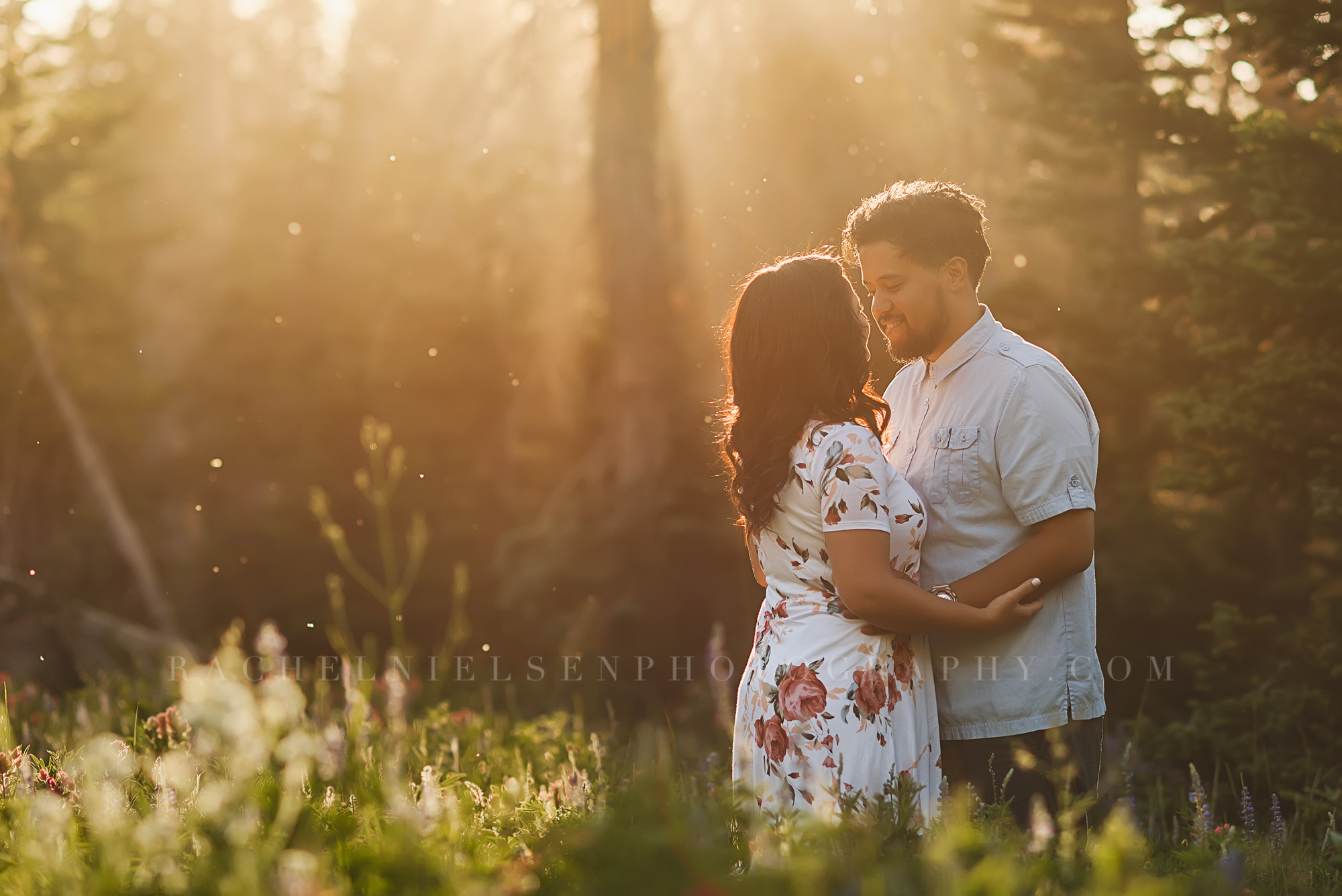 Albion Basin engagement session by Rachel Nielsen
