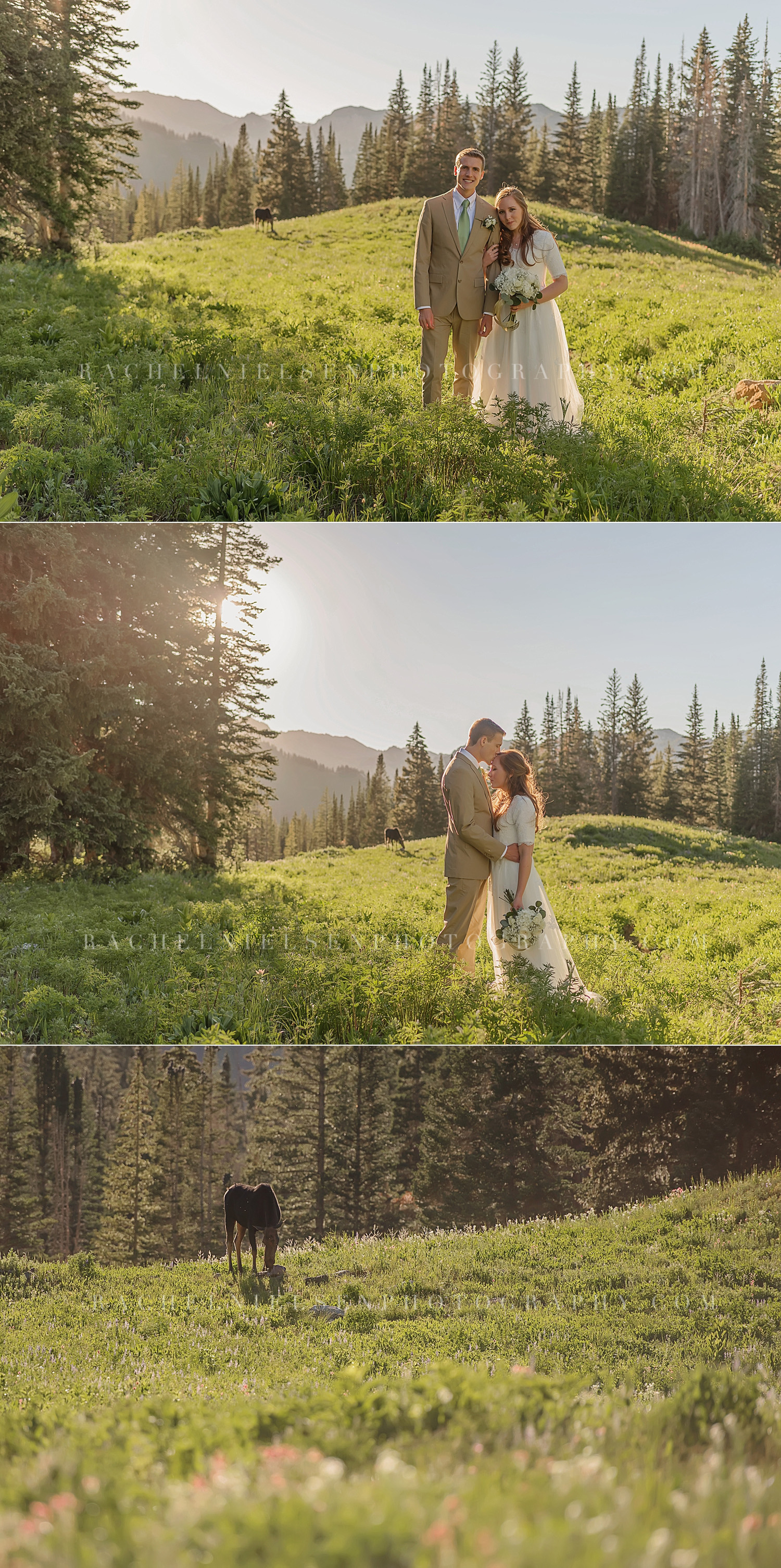 Albion-Basin-Bride-and-Groom-1
